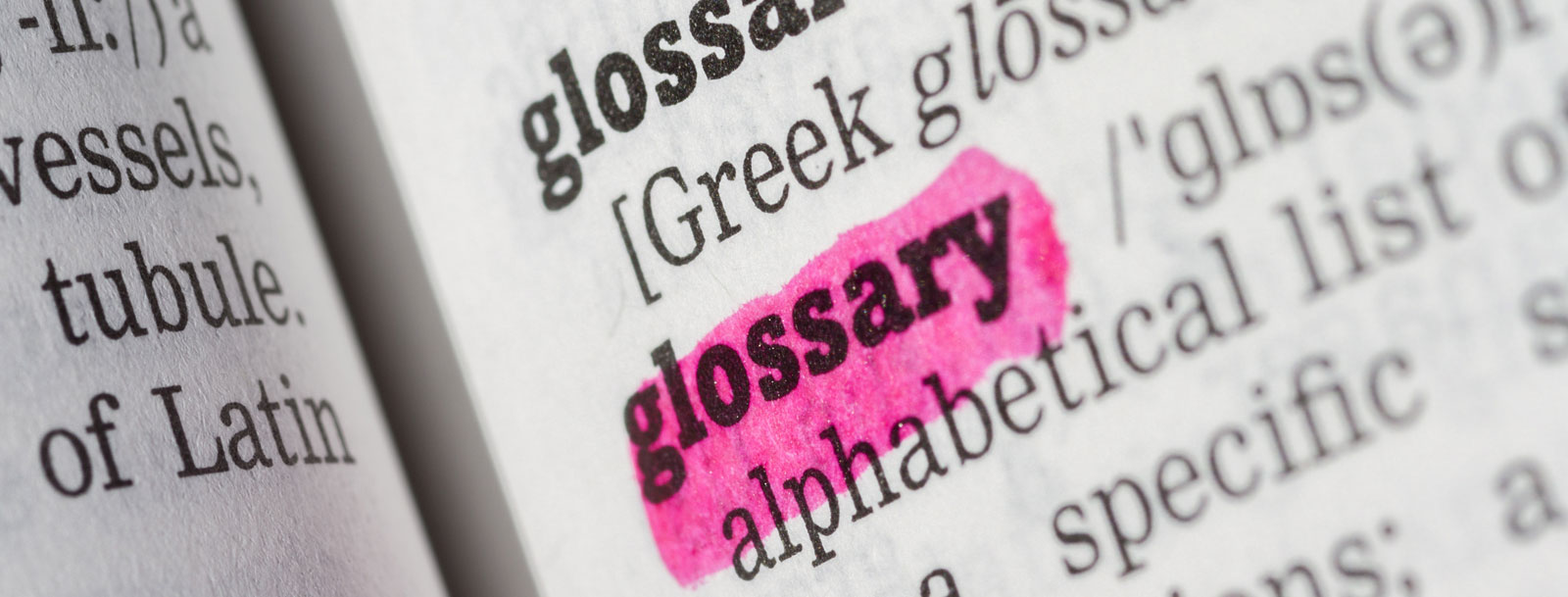A glossary to help you understand the terminology at the senior living in Newton