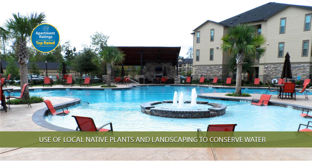 Use of local native plants and landscaping to conserve water