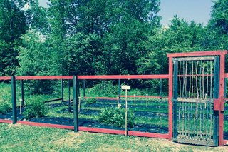 Community garden senior living in vermont