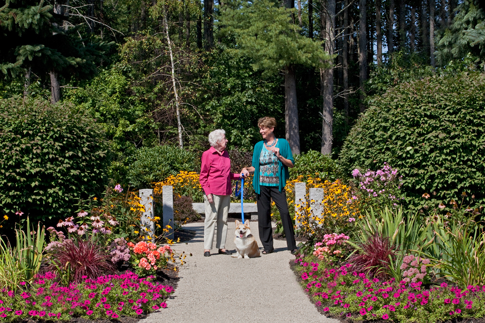 Pet therapy in wilder vermont