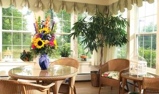 Senior living sun room windham