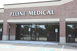 About the Feline Medical Center in Houston