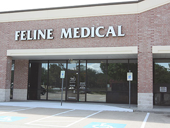 Contact The Feline Medical Center