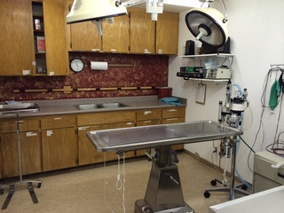 Verde veterinary hospital cottonwood sx suite