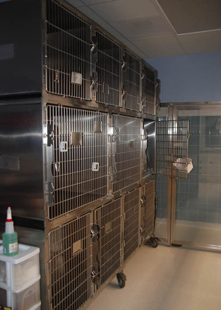 Boarding cages at our pet care hospital in lubbock tx