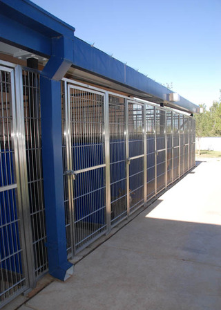 Boarding kennels at our pet care hospital in lubbock tx