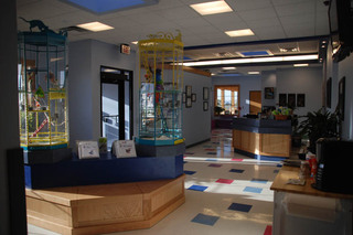 Large open reception area at our pet care hospital in lubbock tx