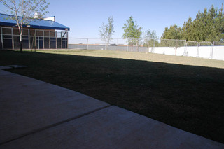 Outdoor play area at our pet care hospital in lubbock tx