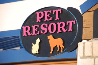 Pet resort in lubbock tx