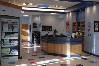 Sunlit lobby at our pet care hospital in lubbock tx