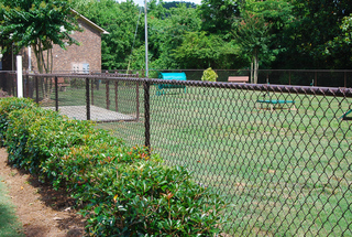 Rollingwood dog park dsc 0008 low res