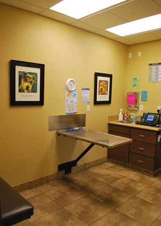 Exam room in south temecula