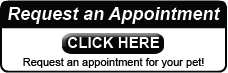 Pet Portal Appointment