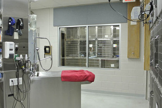 Grooming station at our animal hospital in arlington va