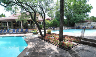 Trees and pool