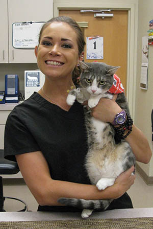 Veterinarian and cat at Care Animal Hospital in Arvada