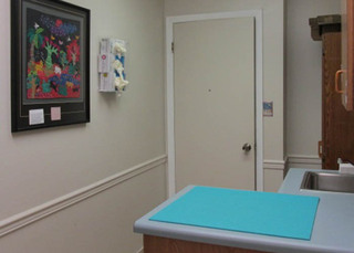 Exam room at our veterinary hospital in niceville fl