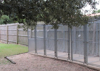 Outdoor kennels at our veterinary hospital in niceville fl