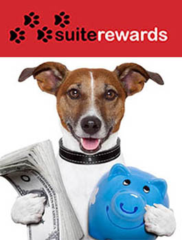 Suite Rewards offered by PetSuites of America