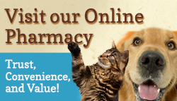 Visit our Pharmacy