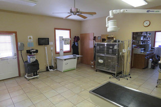 Treatment room at our colorado springs co vet clinic