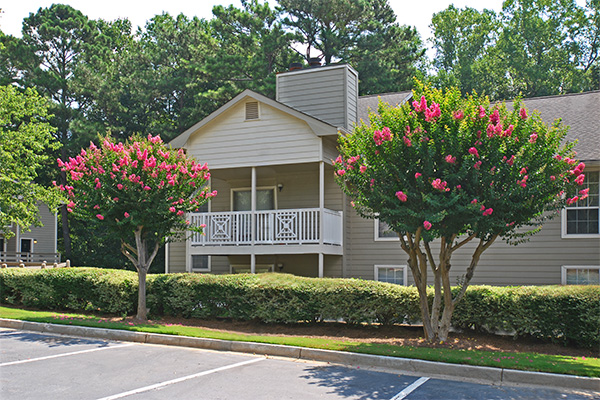 Ml w crape myrtles