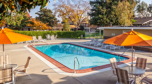 Learn more about the amenities offered at Parkwood Apartments