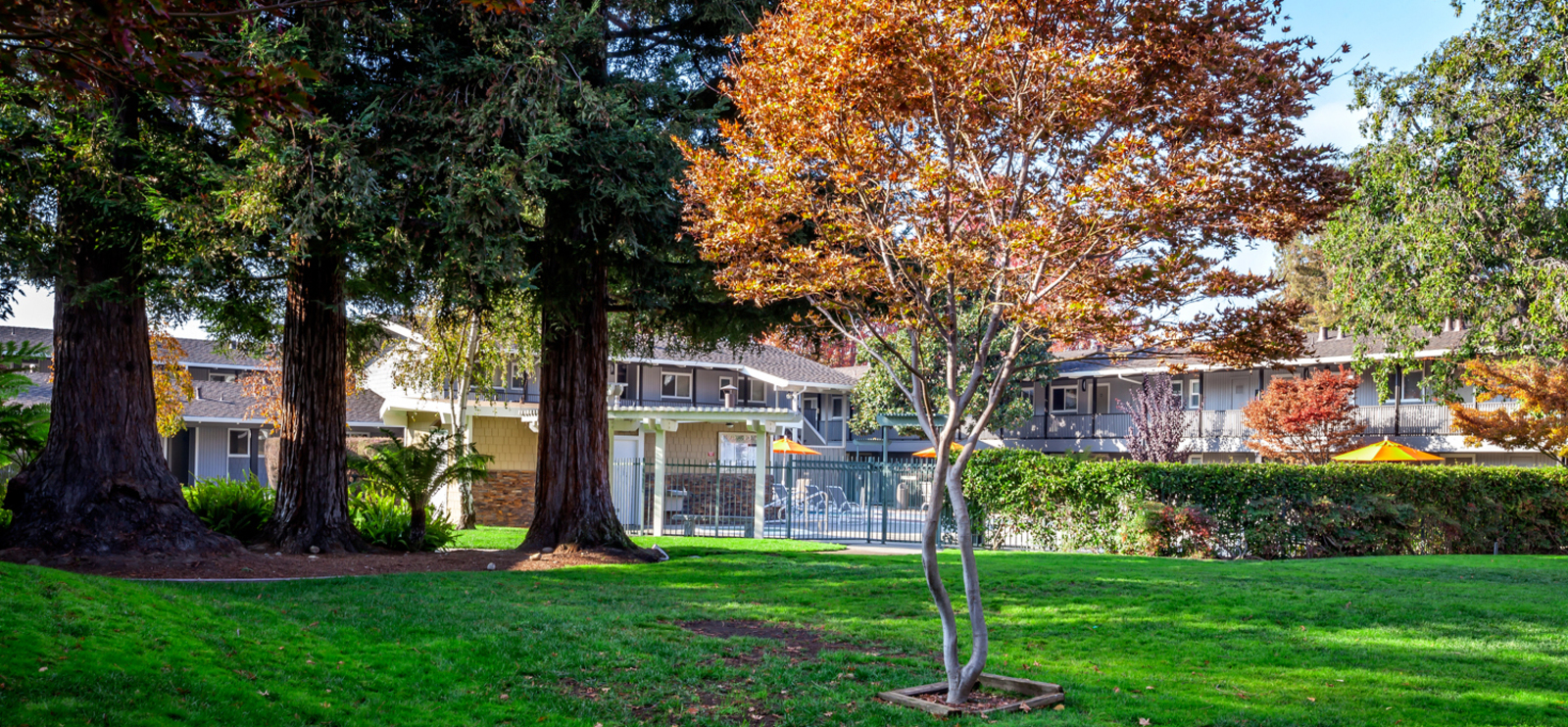 Downtown Sunnyvale Apartments | Parkwood Apartments In Sunnyvale, CA 94087