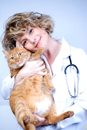 Veterinarian and cat at Santa Clara Animal Hospital in Eugene
