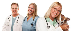 Greywolf Veterinary Hospital Sequim veterinarian clinic careers.