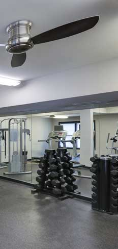 Cardio and weight training equipment fs