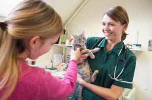 The Blair Animal Hospital team