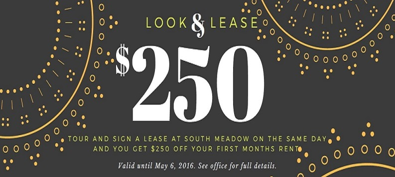 Look & Lease Special
