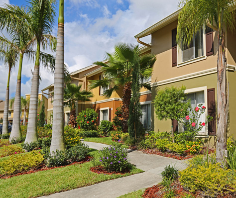 Largo fl apartments for rent madison at largo - One bedroom apartments clearwater fl ...