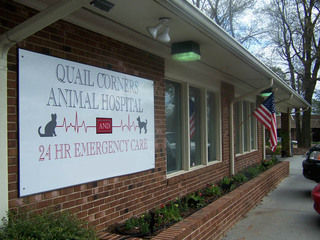 Raleigh North Carolina Animal Hospital exterior