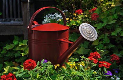 Watering can and garden at Broadmore Senior Living at Bristol in Bristol