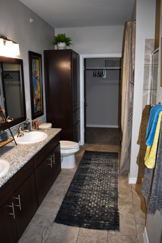 Dominion model bathroom