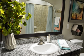 Dominion model bathroom 2