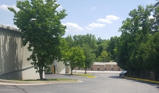 Tree lined entrance at seabrook self storage