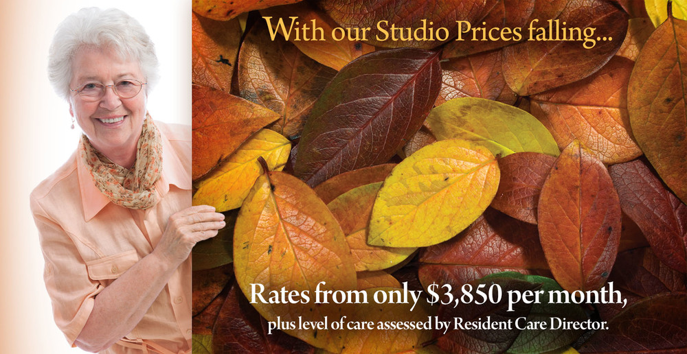 Assisted living irving texas studio specials 01