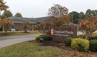 1 dogwood pointe assisted living milan