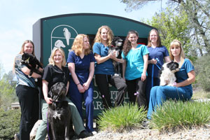 The Westside Pet Hospital and Boarding team