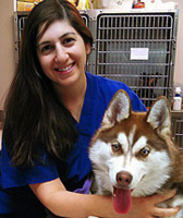 Our Skilled Veterinarians | St  George Hunt Memorial
