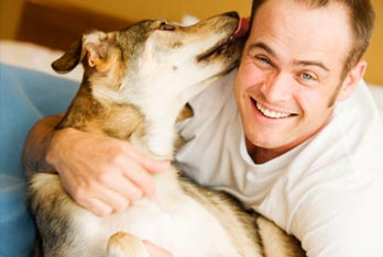 Portage Pointe Apartment Homes are pet friendly apartments.