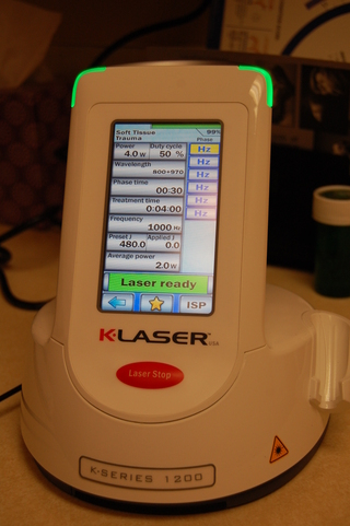 K laser light therapy Discovery Bay Veterinary Clinic