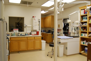 Dog and cat treatment area Discovery Bay Veterinary Clinic