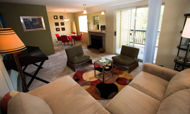 Living room in apartments for rent at StonePoint University Place