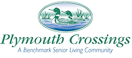 Plymouth Crossings