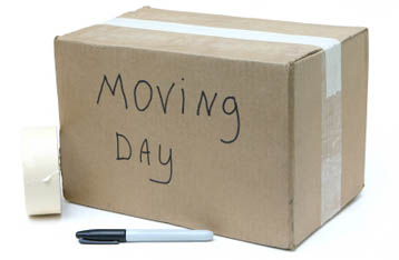 Bay Area Self Storage Moving Guide