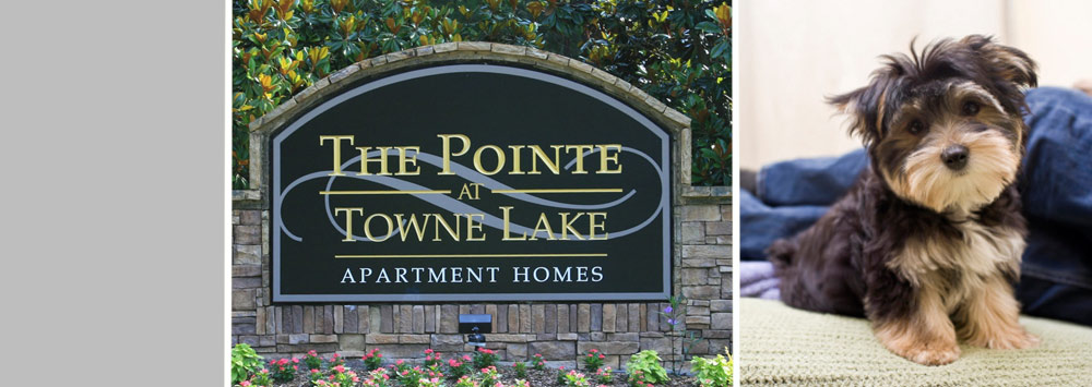 Woodstock ga apartment homes for rent at The Pointe at Towne Lake